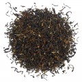 Tippy Golden Earl Grey